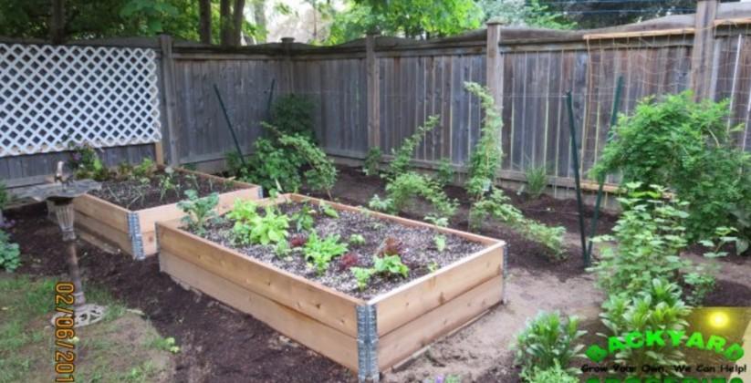 backyard_groceries3